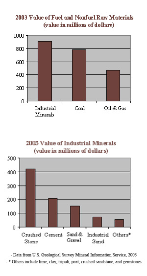 2003 Value of Fuel and Nonfuel Raw Materials