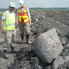 Elrick and Howard examine a fossil stump (right).