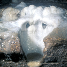 White speleothems resemble a face and is  one of the only living witnesses to the 1811-1812 earthquakes.