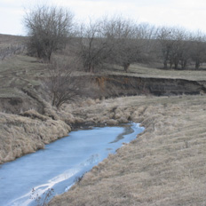 Holocene stratigraphy is shown in the far  bank of the Senachwine Creek.